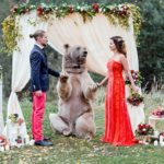 This Bear Officiated A Russian Couple's Wedding